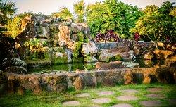 Mari's Gardens