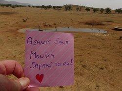 Monika Tours & Safaris