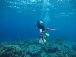 JADS Dive Center