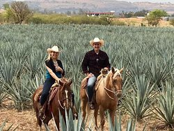 Aventurate por Jalisco