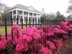 Azalea Residential Historic District