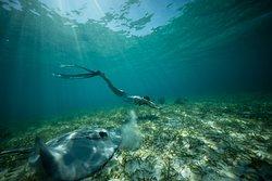 Belize Underwater