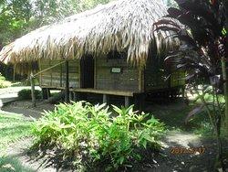 サトウキビ博物館