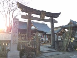 Murakumono Matsu