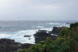 Cape Shionomisaki