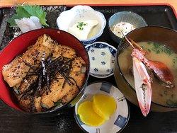 Unoshima Hochikumaru