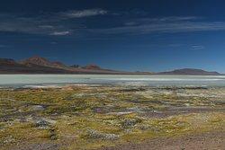 Resarva Provincial Laguna Brava