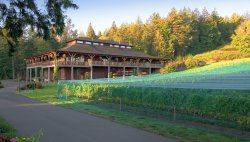 Church and State Wines -Brentwood Bay