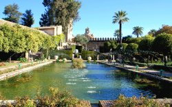 Tiered Gardens of The Alcazaba