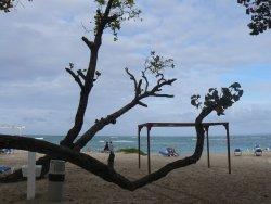 trsè grande et belle plage