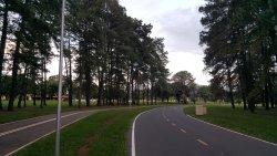 Parque da Cidade (Sarah Kubitschek)