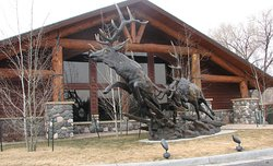 AmericInn Lodge & Suites Cody - Yellowstone