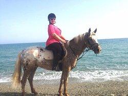 Horse Park Rethymno