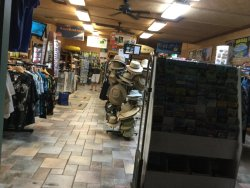 Boss Frog's Dive and Surf Shop