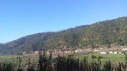 Dwarahat Village