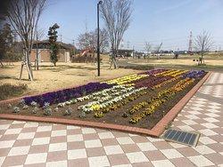 Shiroi Park Complex
