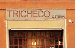 Tricheco