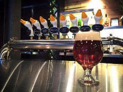 We have 23 beers on tap including 16 of Germany's finest brews.