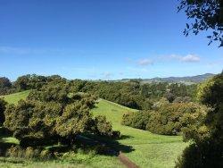 Westwood Hills Park