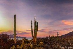 Sunset on the Sea of Cortez near Las Animas Ecolodge
