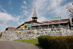 Marche Neuenkirch Ost