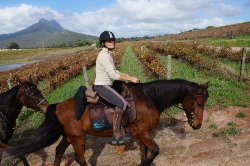 Horse Riding Cape Town