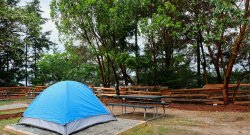Tent site at Arbutus Point Campground, Saturna Island