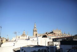 La Oleoteca de Sevilla