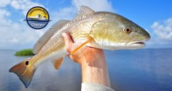 Lowcountry Boys Charters