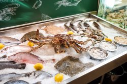 Rybniy bazar
