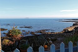 Crail Harbour Gallery