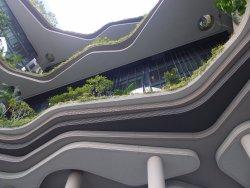 充滿綠色植物,生態環境好