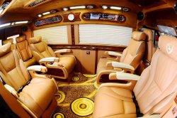 Green Lion Bus