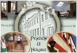 Penzion U Holubu