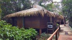 Amazing location for an Amazon adventure