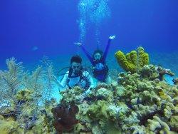 Cayman University Divers