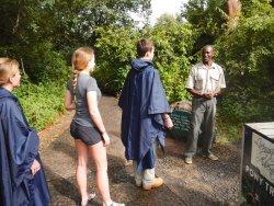 Safari Wild Tours