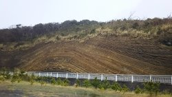 Faulted Strata in Oshima