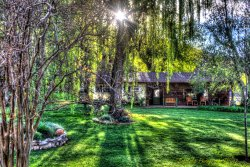 The Vineyards Bed and Breakfast
