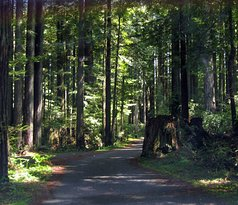 Florence Keller County Park & Campground