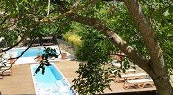 piscine et spa de nage (249175447)