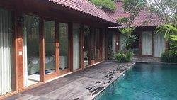 Gekkos Ubud Bali