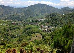 Mayoyao Rice Terraces