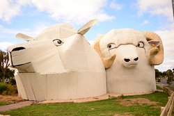 Dog and Sheep Shaped Corrugated Metal Buildings