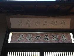 Kurokami no Mori Onsen Tendo no Yu