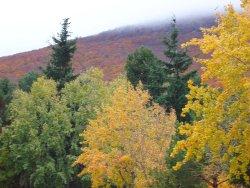 Moncayo Nature Reserve