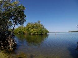 Round Island Beach Park