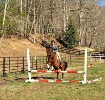 Shoal Creek Horseback Riding