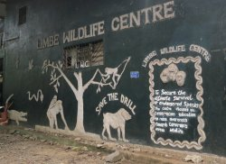 Limbe Wildlife Centre