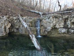 picture from hike on 80 acre grounds